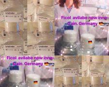 محلول فایکول 100 سی سی